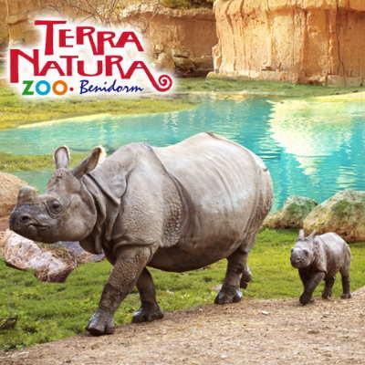benidorm-zoo